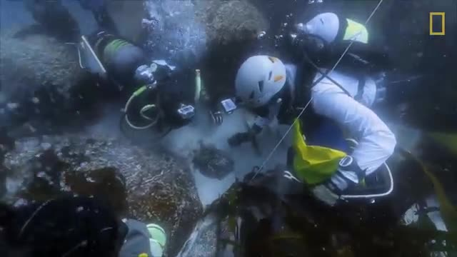 Diving With a Purpose- Finding Slave Shipwrecks